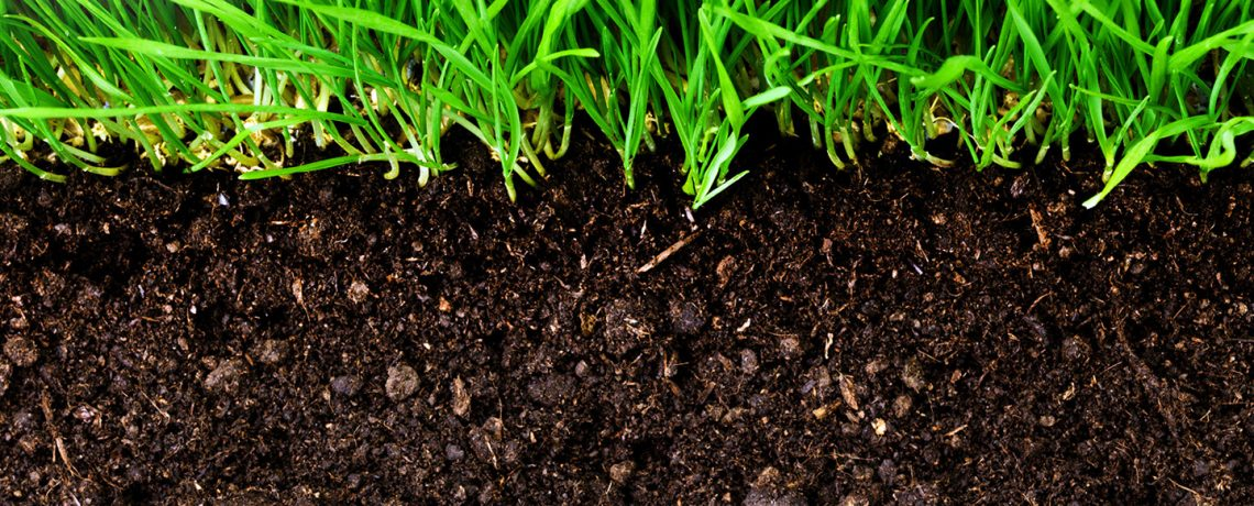 Humic Cation Exchange Capability of Humic Acid is important to Soil