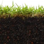 How Does Humic Acid Effect Microbial Activity and What is its Role?