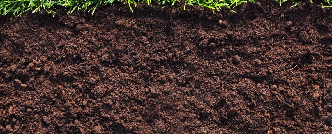Humic Substance and Humic Acid