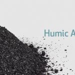 what-is-humus-or-humic-acid/